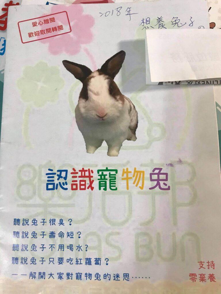 認識寵物兔的小書封面
